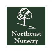 Northeast Nursery